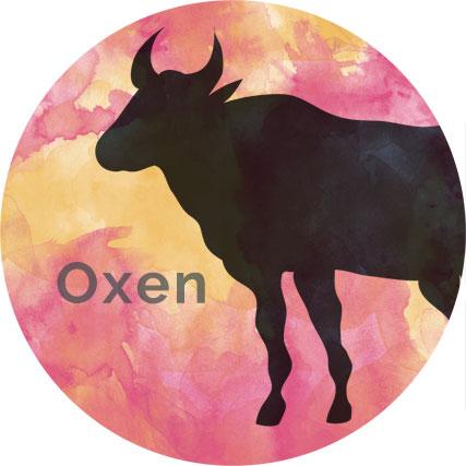 Buffeln