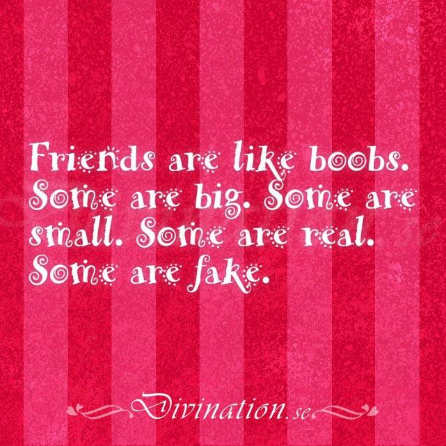 Vänskap kontakt